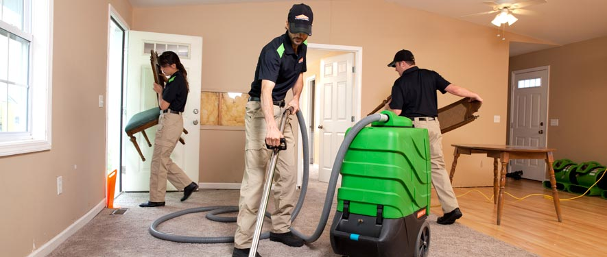 Jenison, MI cleaning services